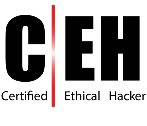 Certified Ethical Hacker Practical